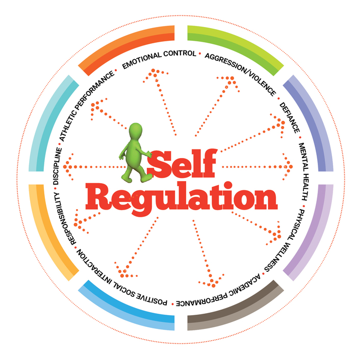 Self Regulation – What it is & Why it Matters?